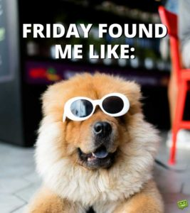 Thank God It's Friday Quotes Funny