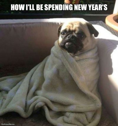 Dog New Year Memes