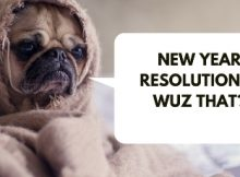 Funny Resolutions for New Year