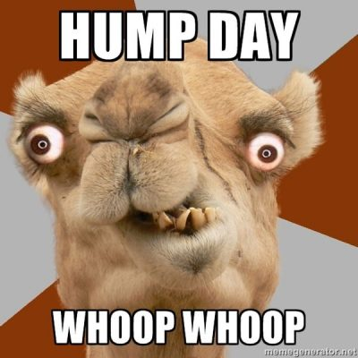 Hump Day Wednesday Pics