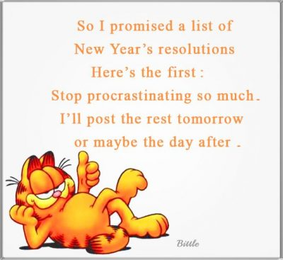 New Year Resolution Joke Quotes