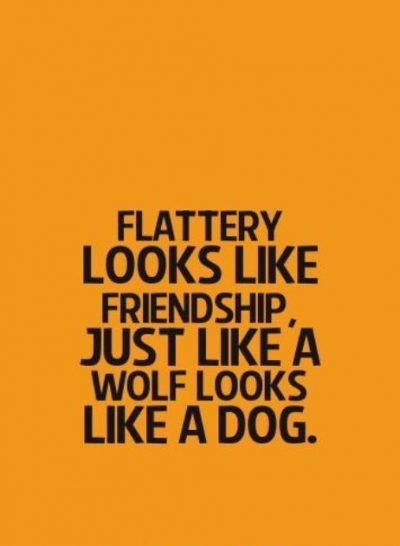 Quotations On Fake Friends