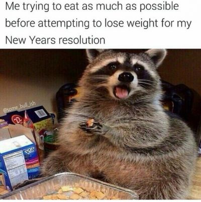 Sarcastic New Year's Resolution Meme