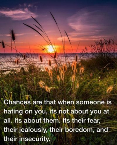 Inspirational Quotes About Jealousy And Envy