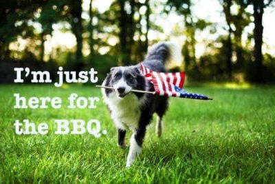 Clever Fourth Of July Captions