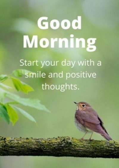 Fresh Morning Quote