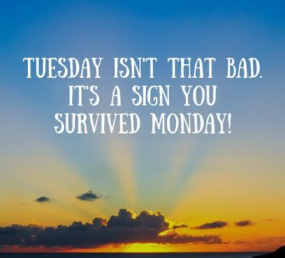 Monday Survival Picture Quote