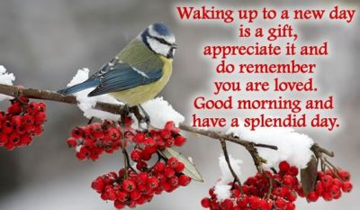Waking Up Morning Quote