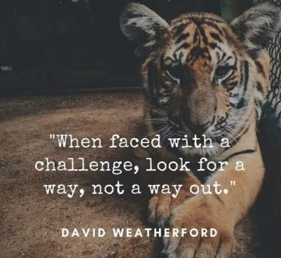 Daring Quotes For Overcoming Adversity