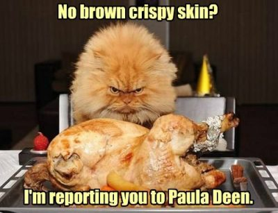 Funny Captions for Thanksgiving