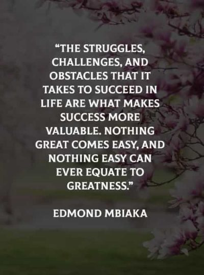 Struggle Quotes About Life