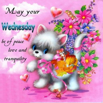 Wednesday Morning Greetings
