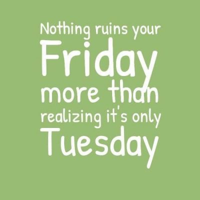 Funny Tuesday Quotes
