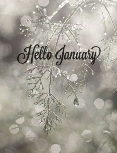 Hello January 2021 Pictures