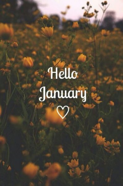 Hello January Flowers Pics