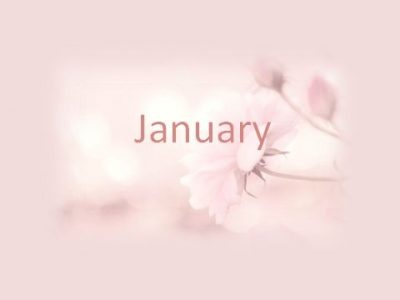 Pink January Images