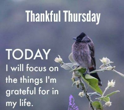 Thankful Thursday Blessings