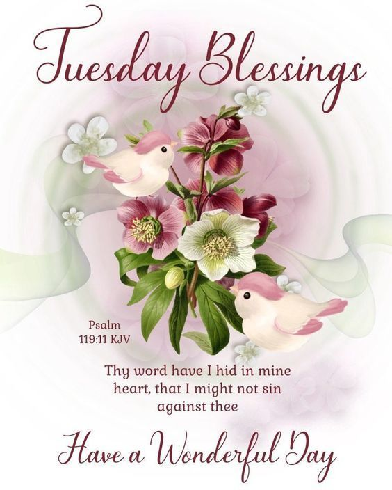 180+Tuesday Blessings Images, Photos, Quotes, GIF Pics