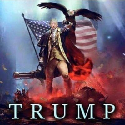 Funny American Flag And Trump Photos