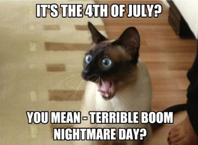 Hilarious 4th Of July Memes