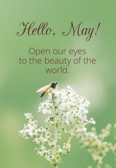Sweet May Sayings