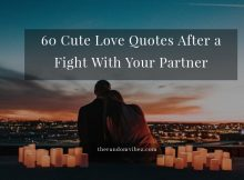 Love Quotes After Fight