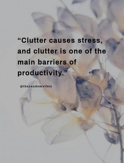 Mind Clutter Quotes