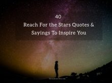 Reach For the Stars Quotes & Sayings