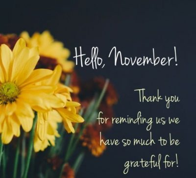 Welcome November Month 2020