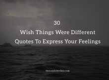 30 I Wish Things Were Different