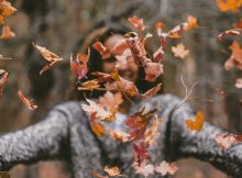 Autumn Quotes for Kids with Images