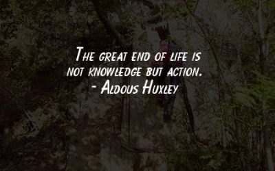 End Of Life Quotations