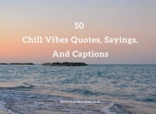 50 Chill Vibes Quotes, Sayings, And Captions
