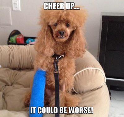 Cheer Up Meme Images