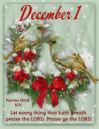 December Quotes From Bible