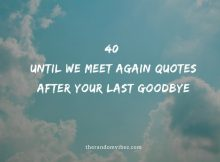40 Until We Meet Again Quotes After Your Last Goodbye