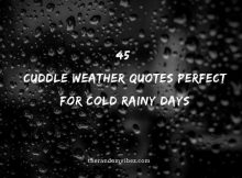 45 Cuddle Weather Quotes Perfect For Cold Rainy Days