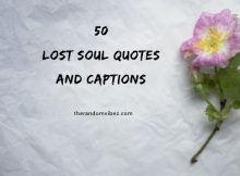 50 Lost Soul Quotes and Captions