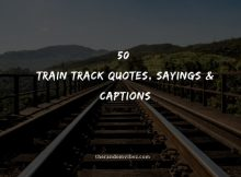 50 Train Track Quotes, Sayings & Captions