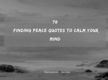 70 Finding Peace Quotes To Calm Your Mind