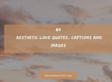 80 Aesthetic Love Quotes, Captions And Images