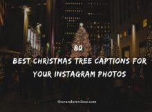 80 Best Christmas Tree Captions For Your Instagram Photos