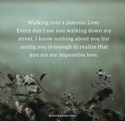 Connection Platonic Love Quotes