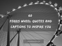 Ferris Wheel Quotes And Captions