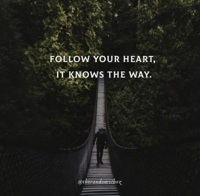 Follow Your Heart Quotes