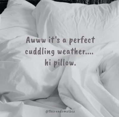 Funny Cuddle Weather Quotes