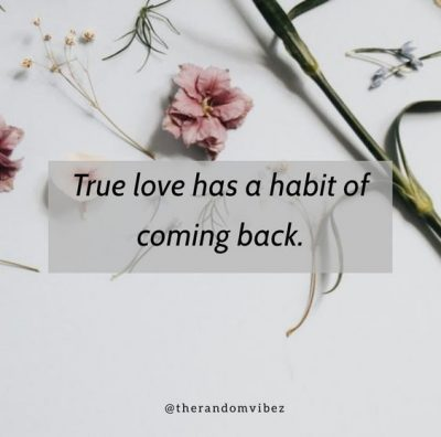 Quotes About Old Love Coming Back