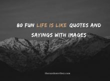 80 Fun Life Is Like Quotes And Sayings