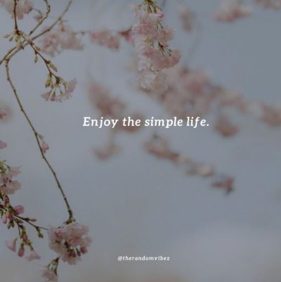 Simple Life Quotes Images