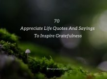 70 Appreciate Life Quotes And Sayings